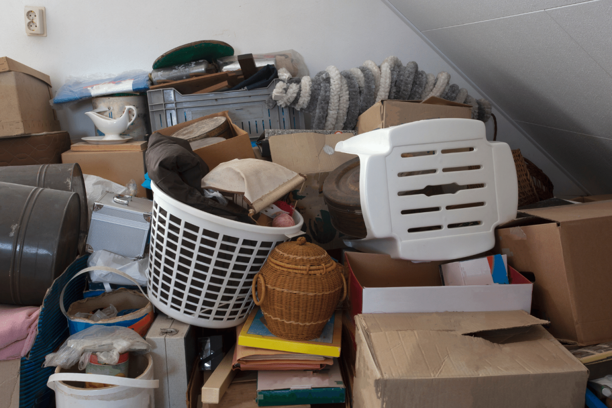 professional organizer for hoarders